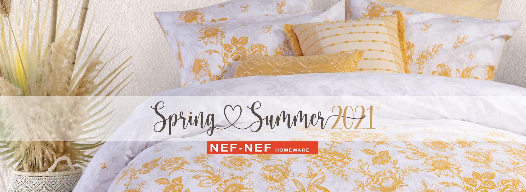 NEF-NEF Slide 1