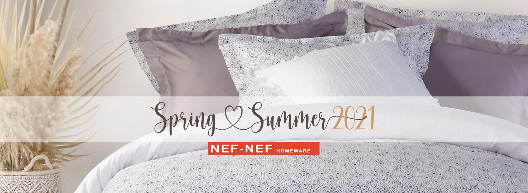 NEF-NEF Slide 2